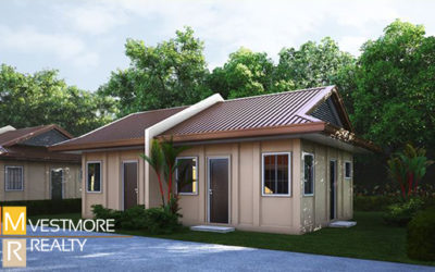 Greenwoods Subdivision – Eden Deluxe Bungalow at Mintal, Davao City